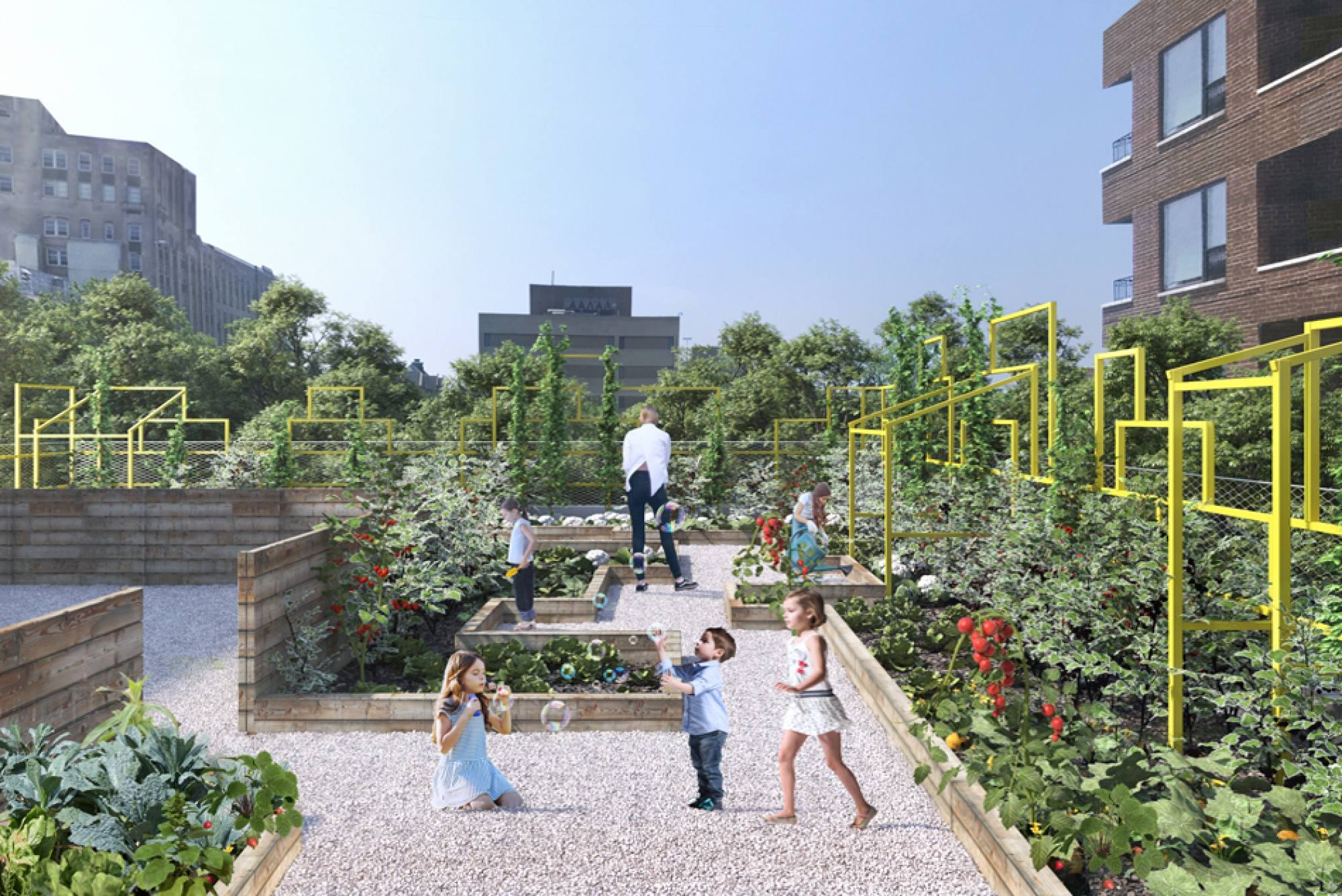 Seed Need: Piuarch's rooftop garden experience now in Chicago