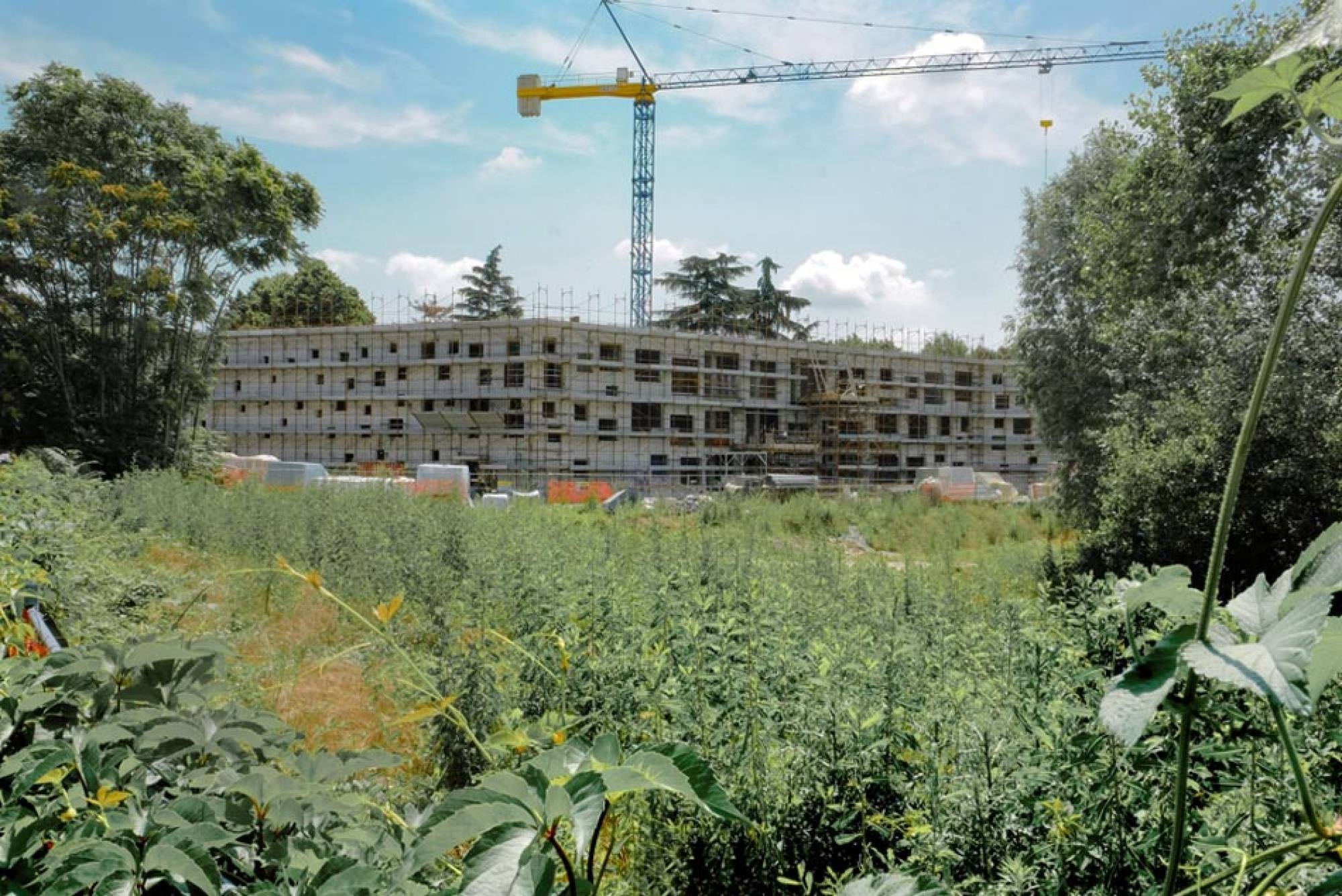 Designed by Piuarch, the Collegio di Milano is now almost completed